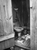 Toilet in Outhouse in Slum Area a Few Blocks from the Capital in Washington  Dc