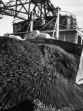 Huge Pile of Coal in Us Near the Mine and Generating Plant