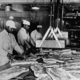 Butchers Trimming Pork Bellies for Bacon at Swift Meat Packing Packington Plant