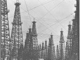 Mass of Oil Derricks at Spindletop Oil Field