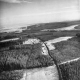 Aerial View over Ardennes Showing Us Tank Company During the Battle of the Bulge