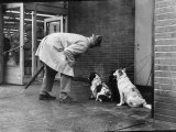 French Actor Jacques Tati Talking to a Couple of Dogs