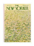 The New Yorker Cover - June 16  1973