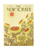 The New Yorker Cover - August 24  1968