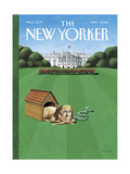 The New Yorker Cover - May 1  2006