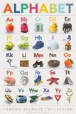 Alphabet Charts