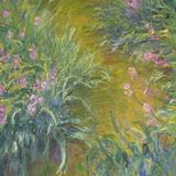 Irises by Monet