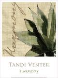 Tandi Venter