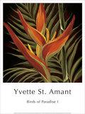 Yvette St. Amant