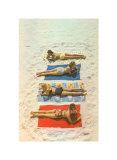 Women's Bathing Suits (Color Photography)