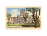 New York Universities