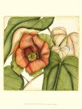 Hand Embellished Prints