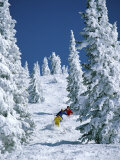 Skiing (SuperStock Photography)