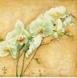 Botanical by Type