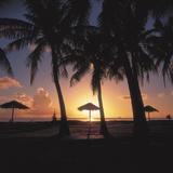 Beach Landscapes (Jupiter Images Photography)