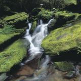 Natural Landscapes (Jupiter Images Photography)