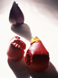 Boxing (SuperStock Photography)