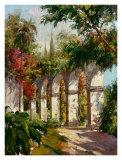 Arches (Fine Art)