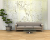 Map Wall Murals