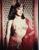 Gina Lollobrigida (Pin-Up)