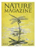 Nature Magazine (Vintage Art)
