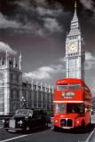 Buses & Trucks