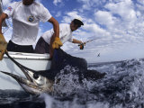 Fishing (PCN Photography)