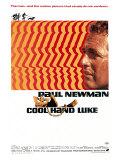 Paul Newman (Films)