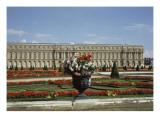 Floral & Botanical (RMN)