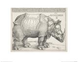 Great Master Drawings (British Museum)