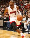 Dwyane Wade (NBA 2010-2011 Season)