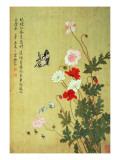 Ma Yuanyu