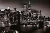 New York's Cities