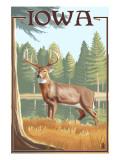 Iowa Travel Ads