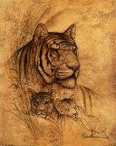 Wild Cats by Species