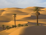 North African Cultures