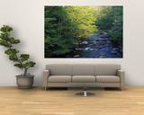 Landscape Giant Art