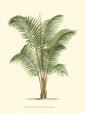 Botanical by Subject