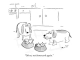 Animal New Yorker Cartoons