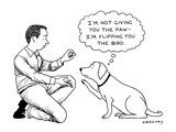 Alex Gregory New Yorker Cartoons