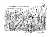 Suburban New Yorker Cartoons