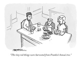 Garden New Yorker Cartoons
