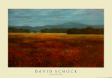 David Schock