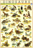 Animal Specialty Categories