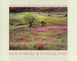 Nick Zungoli