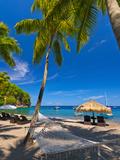 Caribbean (Jon Arnold Images)