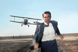 Cary Grant (Films)
