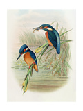 William Hart and John Gould