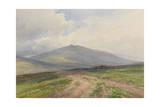 Landscape (Royal Albert Memorial)