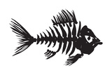 Fish Skeleton Art